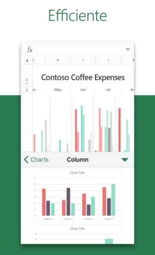 Microsoft Excel 3