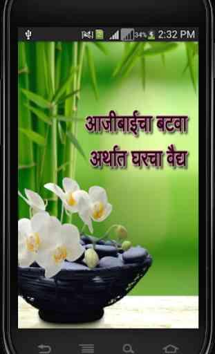 Ayurvedic Upchar in Marathi 1