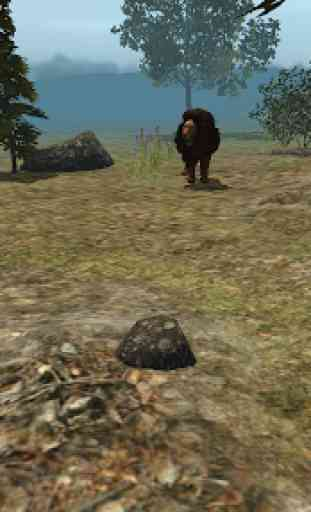 vero leone simulatore 2