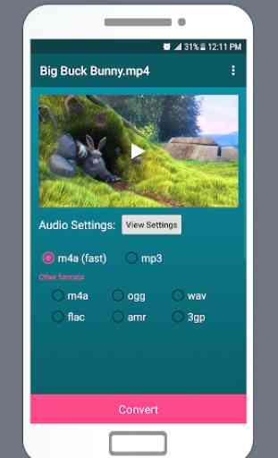 LiteC - Video to MP3 Audio Converter Sound Extract 2