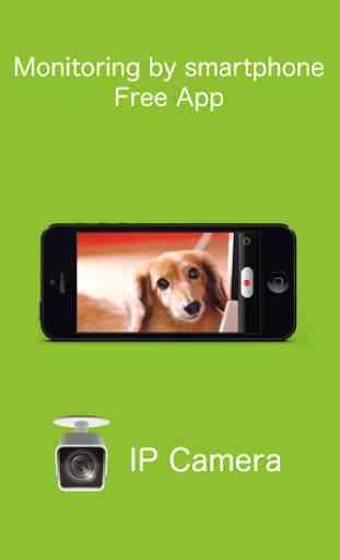 IP Camera - Surveillance cam 1