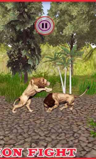 Selvaggio Italiano Lions Lotta 4